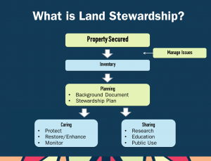Land Stewardship flow chart