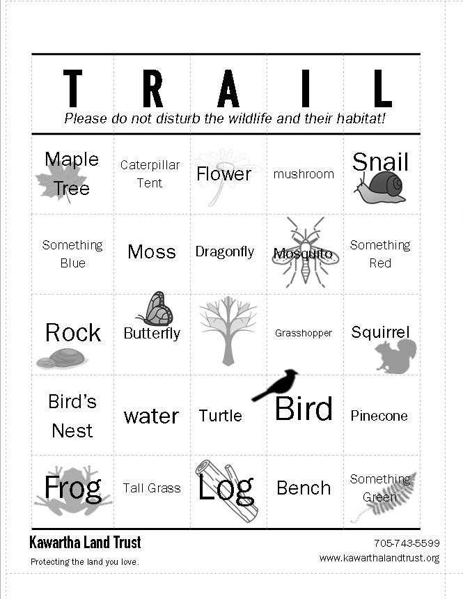 Trail Bingo Card