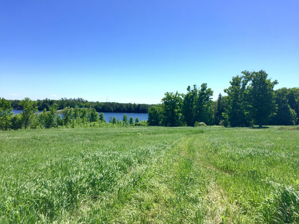 John Earle Chase Memorial Park overlooking Pigeon Lake