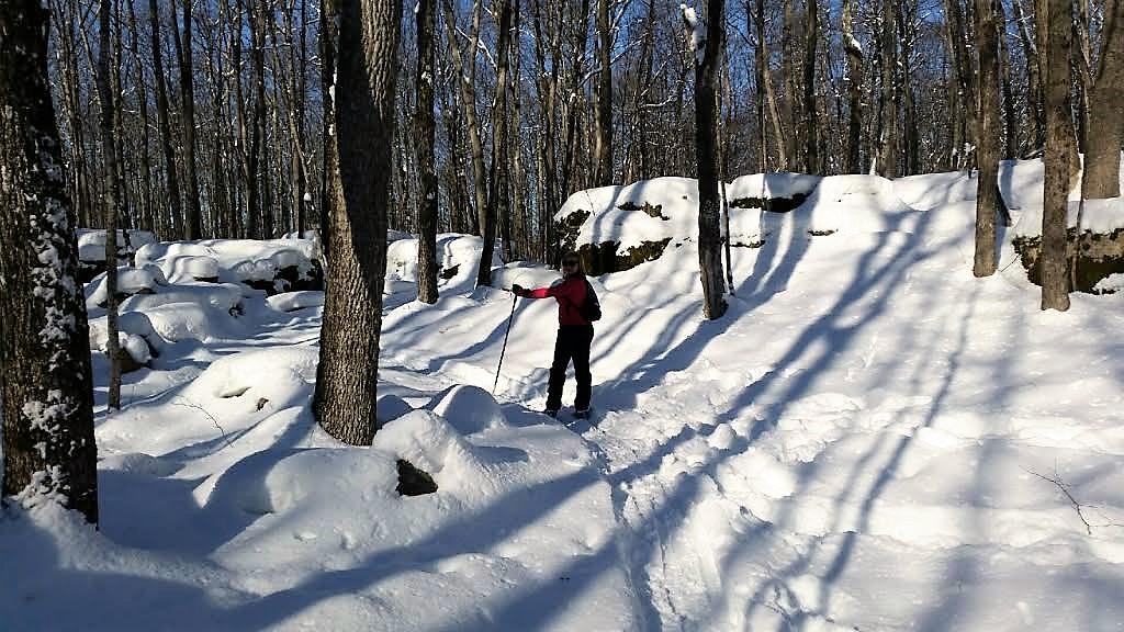 Danielle Cross-Country Skiing