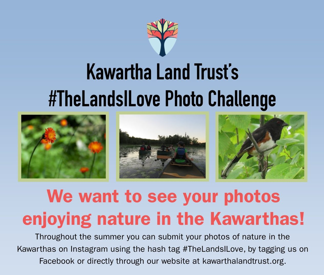 Photo challenge poster
